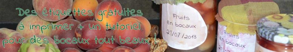 etiquettes gratuites pour jolis bocaux de fruits cl mentine la mandarine. Black Bedroom Furniture Sets. Home Design Ideas