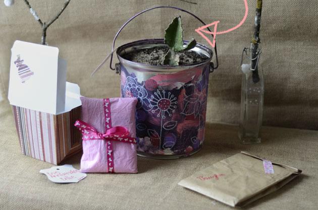 Offrir une plante pour un anniversaire : activité avec un jeune enfant