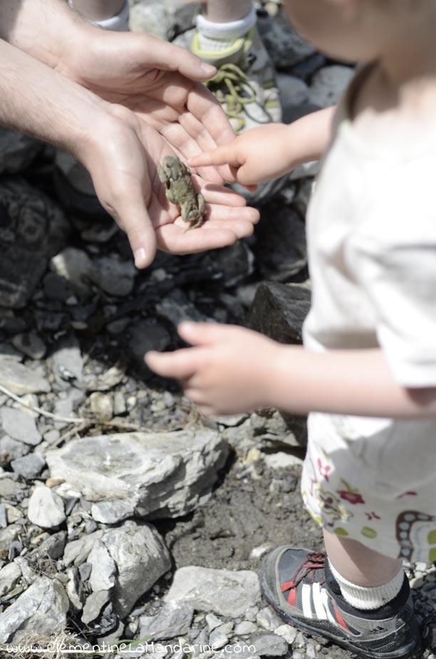 50 idées pour connecter les enfants avec la nature