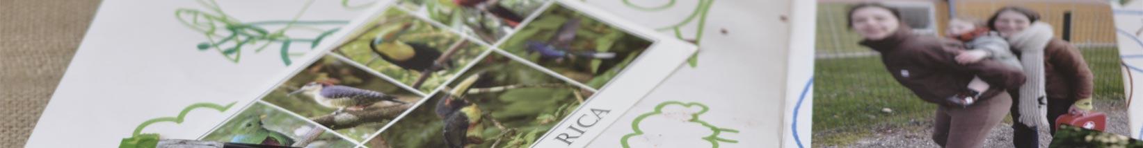 40+ idées pour un journal de vie écologique et récup'
