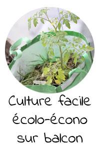 Culture facile, écologique et économique