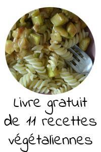 Livre gratuit de 11 recettes végétaliennes faciles