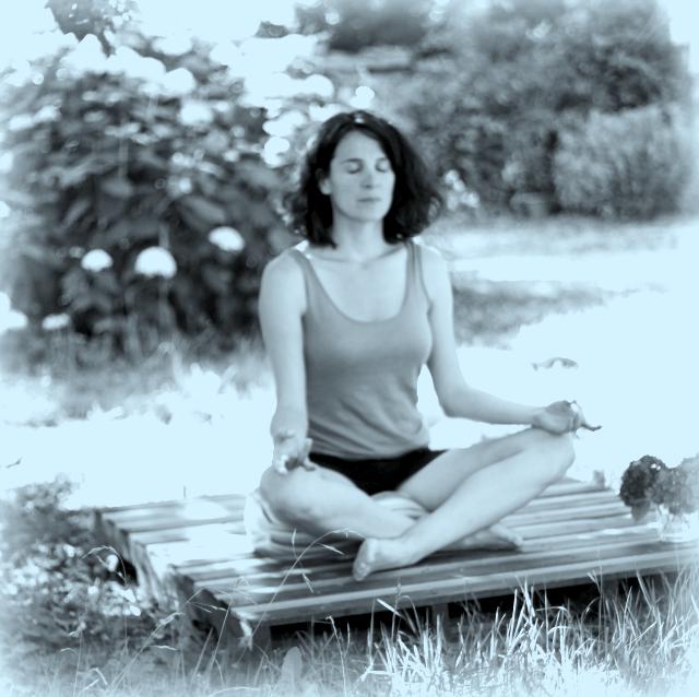 plateforme de meditation en palette save the green