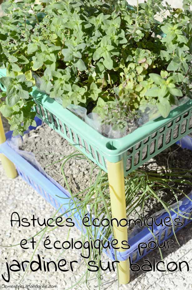 astuces-economiques-et-ecologiques-pour-jardiner-sur-balcon-clementine-la-mandarine