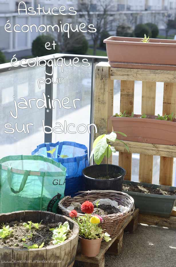 astuces-economiques-et-ecologiques-pour-jardiner-sur-ton-balcon-clementine-la-mandarine