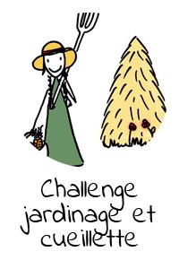 challenge-jardinage-et-cueillette-sauvage-en-ville-clementine-la-mandarine