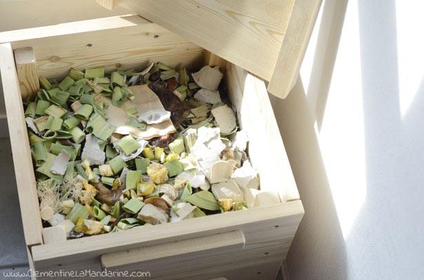 compostage-avec-des-vers-en-appartement-un-an-de-recap-clementine-la-mandarine