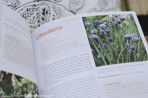 livre-jardinage-ecologique-en-pot-clementine-la-mandarine