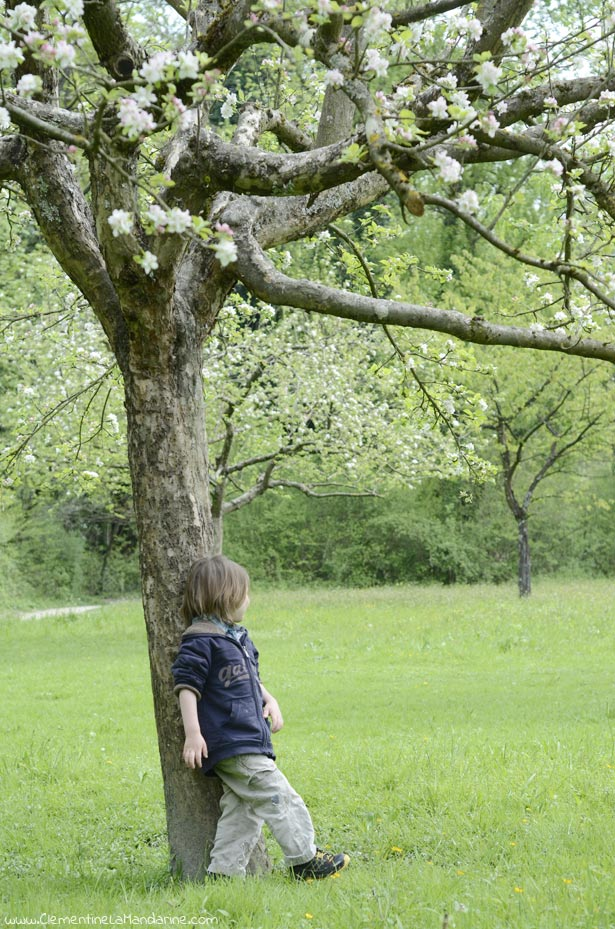 seance-photo-rigolote-avec-ses-enfants-clementine-la-mandarine