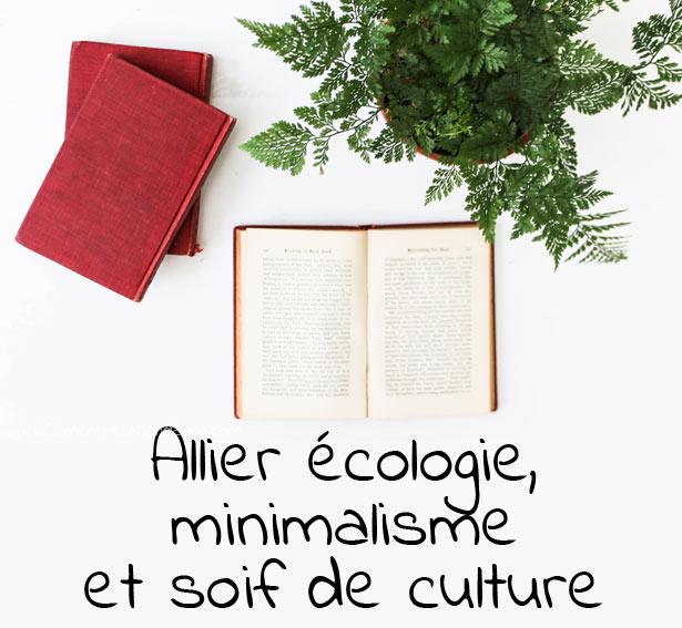 ecologie-minimalisme-et-culture-clementine-la-mandarine