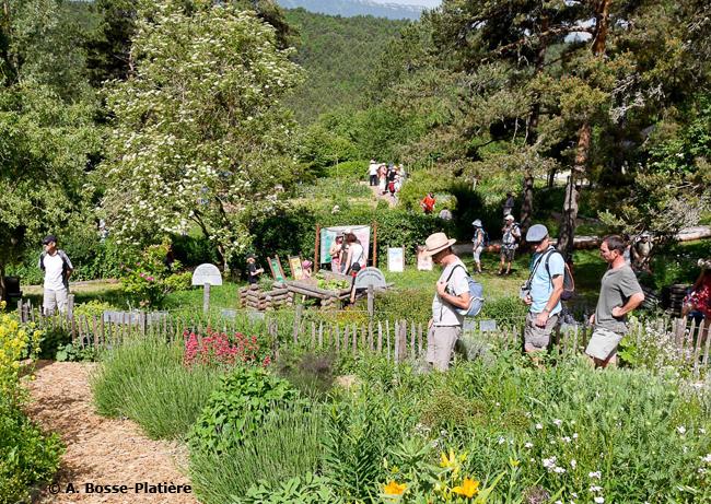 07-© Antoine Bosse-Platière - Visiteurs dans les jardins