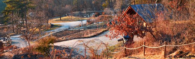 10-© Omar Mahdi - Cabane des jardiniers en automne