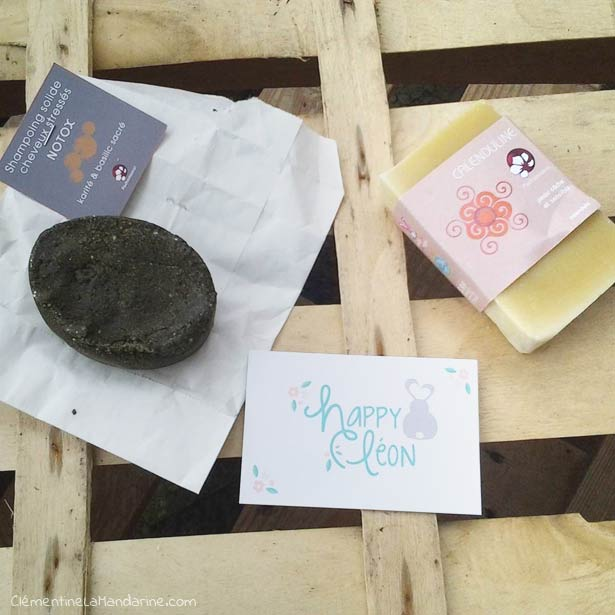 happy-leon-idee-cadeau-utile-ecologique