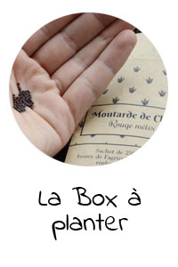 la-box-a-planter-semence-paysannes-clementine-la-mandarine