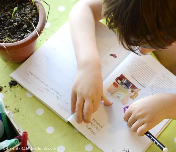 projet-regarder-les-plantes-grandir-avec-un-enfant-clementine-la-mandarine