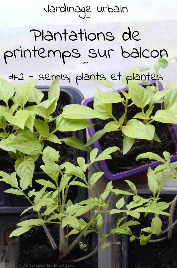 jardinage-balcon-bio-clementine-la-mandarine