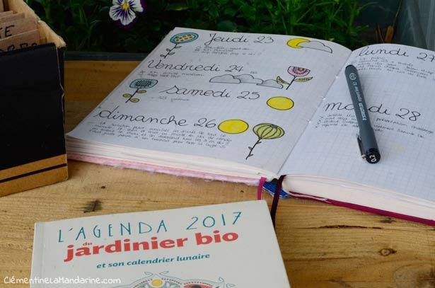 organiser-jardinage-urbain-clementine-la-mandarine