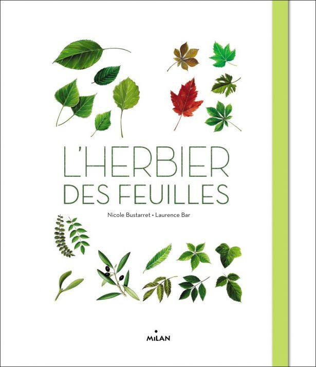 lherbier-des-feuilles