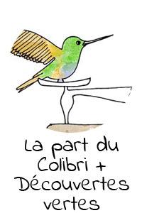 part-colibri-clementine-la-mandarine