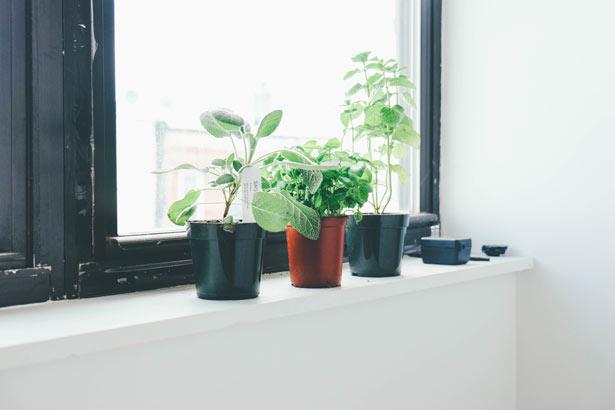 5 clés pour tes premiers pas minimaliste