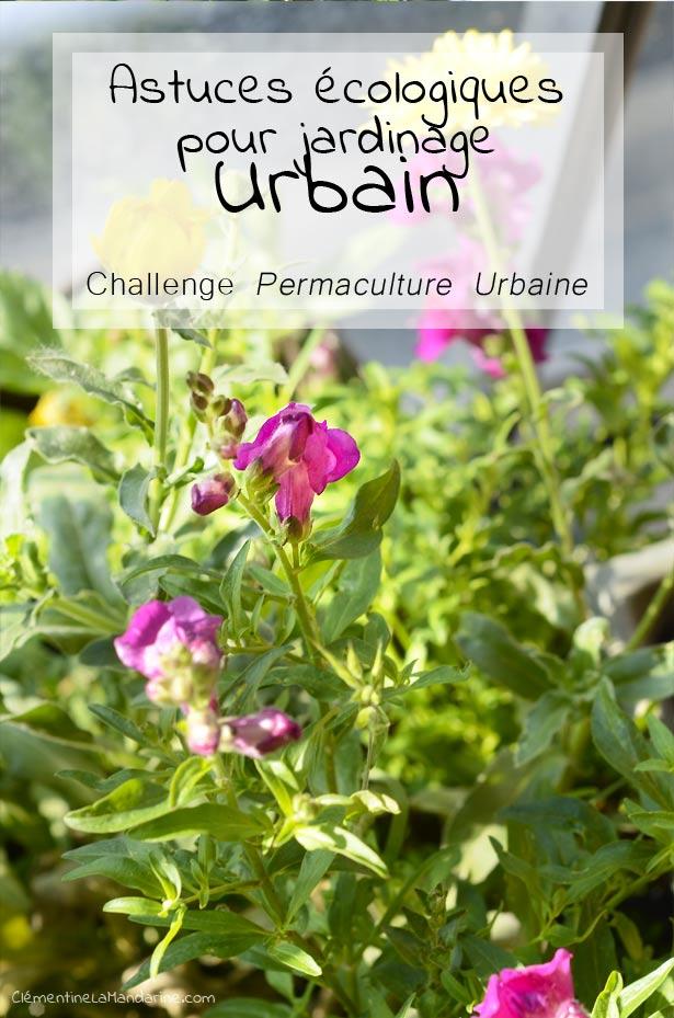 Astuces écologiques pour jardinage urbain