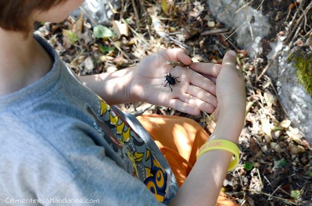 Randonner avec les enfants #3 – Préparer le matériel